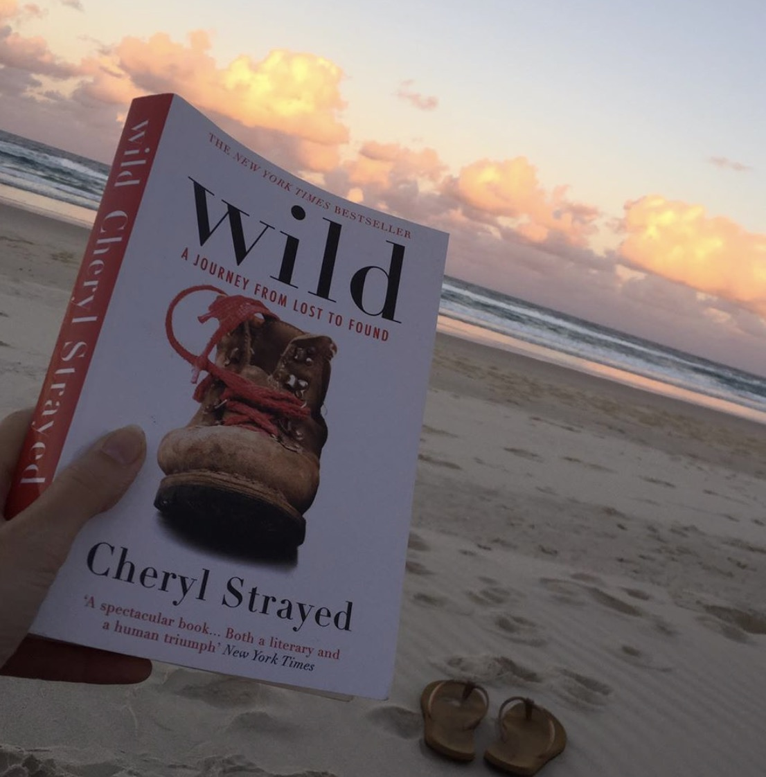 wild Cheryl strayed workkidssleep