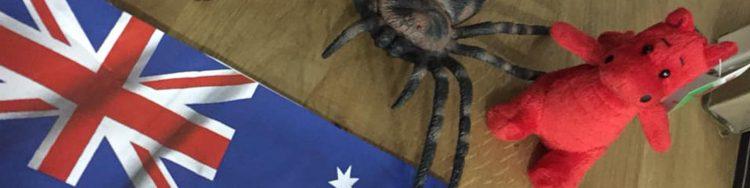 home from home australia workkidssleep